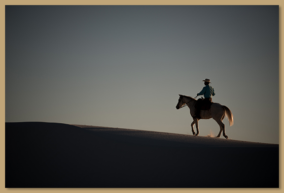 Full Moon Trail Rides | Acacia Riding Adventures